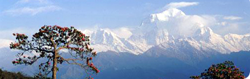 Nepal, Trekking Guide, Travel Guide